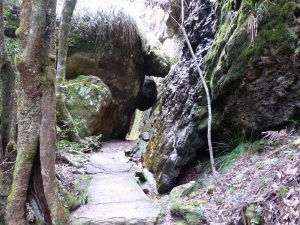 The path leads throgh a cavern of fallen rocks. Note the growth of moss on the damp rock.