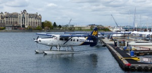Several Harbour Air Seaplanes at Victoria Harbour.