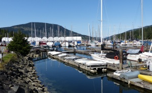 Marina at Maple Bay. Note the covered marina berths in the background.