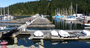 Empty Maple Bay Marina berths.