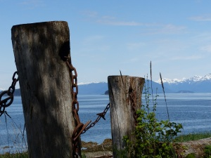 Old wharf pilingfs at Icy Strait Point.