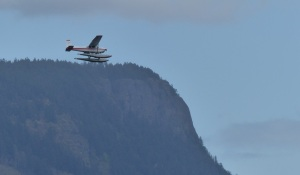 Seaplane buzzing Maple Bay before landing at Mill Bay.