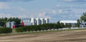 Grain silos - Ukraninas are noted for their grain silos.