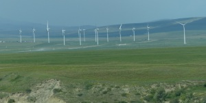 Just a few of around 280 Wind Turbines in the Pincher Creek Valley.