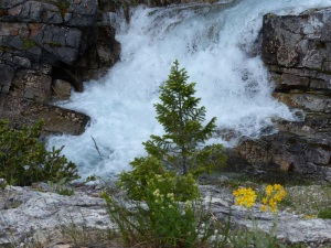 Camerosns Creek high in the hills above Waterton. The drop tro the water is steep.