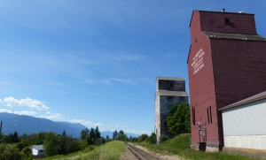 Fernie grain elevators. They are disused and look on the verge of self destruction.