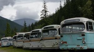Vancouver buses at Sandon.