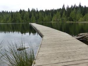 Lake Lizard.