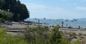 Hadden Park Beach.