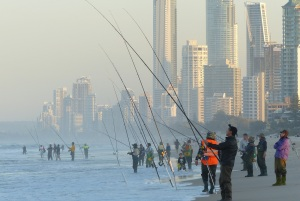 Fisher persons with Surfers Paradise, in the background.