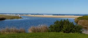 More Bellambi Lagoon.