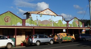 A painted Nimbvin store.