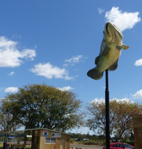 Hmmm! A tribute to the Murray Cod at a place nowhere near the Murray River. It seems the MacIntyre River was stocked with Murray Cod some years ago and they have multiplied. An annual fishing competition is held at Goondiwindi.
