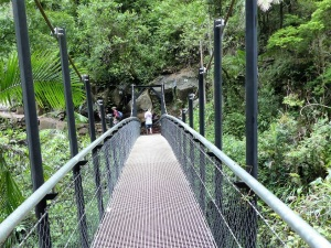Suspension Bridge over Little Nerang Creek.