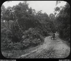 Bulli Pass as it was almost 150 years ago.