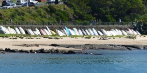 I love seeing dinghy's and canoes line up at Wollongong Harbour (Belmore Basin)