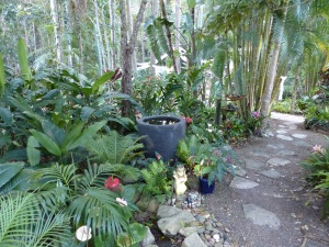 Part of the extensive gardens at Noosa Valley Manor.